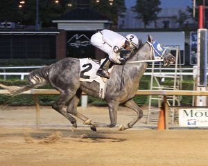Explore earned his 4th career win Monday at Mountaineer and was sent off as the betting favorite. Photo by Coady Photography.