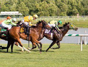 Rebellious Warrior scored a gate to wire win over 11 others July 10th at Laurel. Photo by Jim McCue.