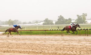 Runninginthevale won for the second time in his last three starts July 4th at Laurel. Photo by Jim McCue.