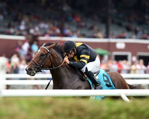 Long On Value won the $100,000 Lucky Coin Stakes at Saratoga July 25. Photo by Coglianese Photography.