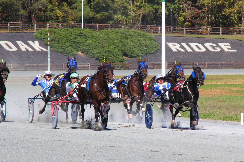 Harness racing took place at the Oak Ridge Estate in Nelson County last year.