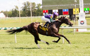 The Mike Trombetta trained Gem got her first lifetime win August 13th at Laurel. Photo by Jim McCue.