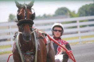 shenandoah downs open wknd