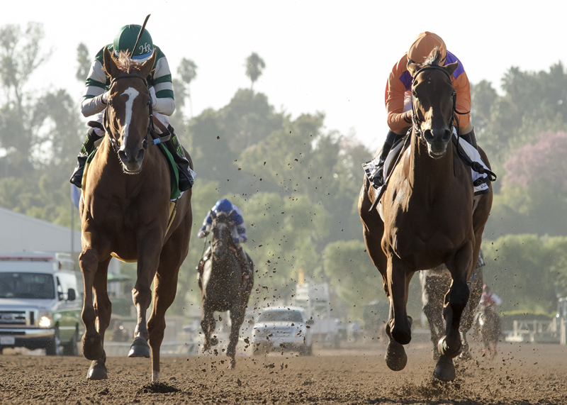 Stellar Wind and Victor Espinoza, left, hold off Beholder and Gary Stevens to win the Grade I $300,000 Zenyatta Stakes Saturday, Oct. 1, 2016 at Santa Anita Park, Arcadia, CA.  ©Benoit Photo