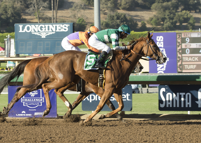 Hronis Racing's Stellar Wind and jockey Victor Espinoza, outside, outleg Beholder (GaryStevens), inside, to win the Grade I, $300,000 Zenyatta Stakes, Saturday, October 1, 2016 at Santa Anita Park, Arcadia CA. © BENOIT PHOTO