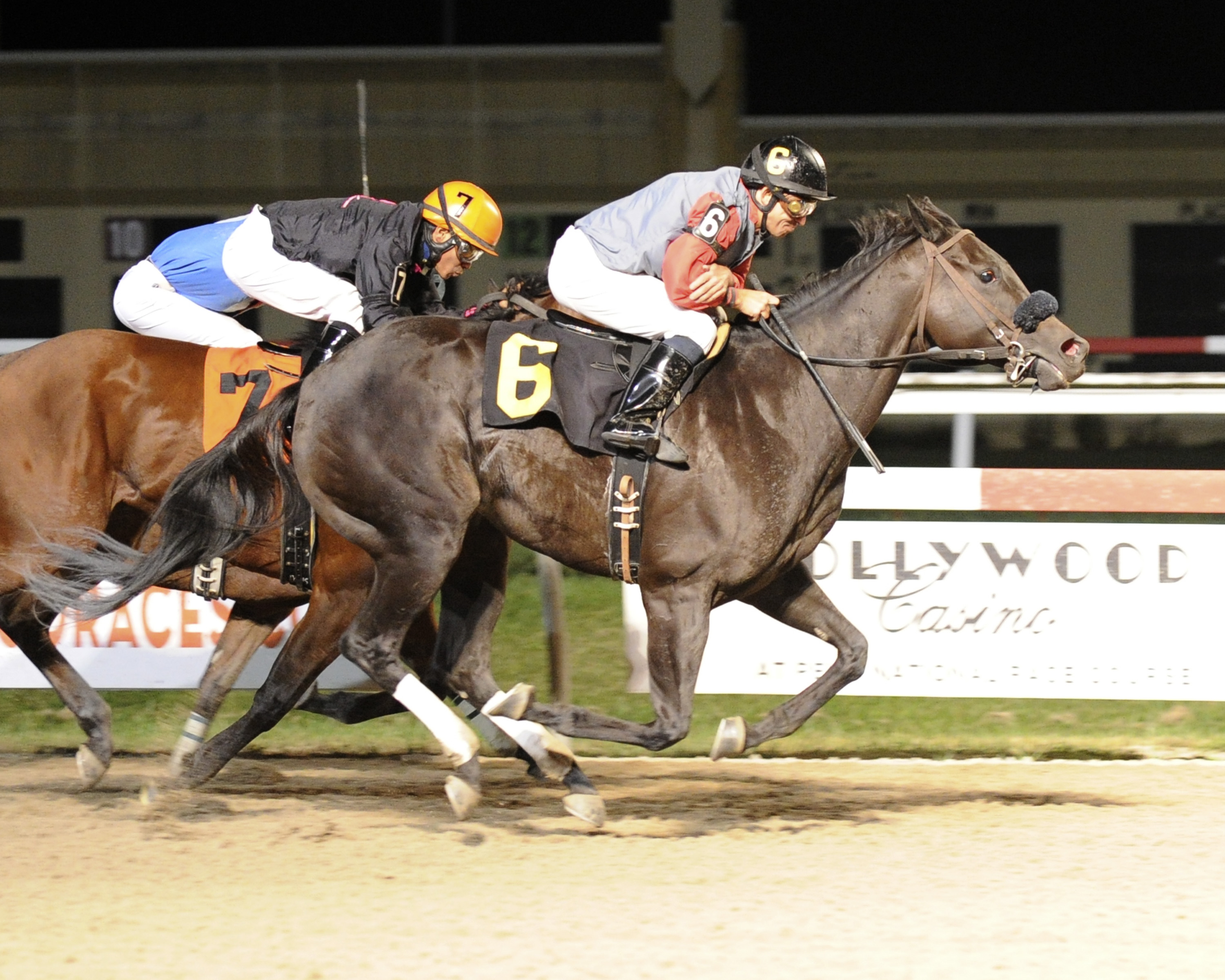 True Cost, bred by Anne Tucker, won a tight half length triumph over Deliver Me at Penn National in a $32,850 claiming event. Photo by B&D Photography.