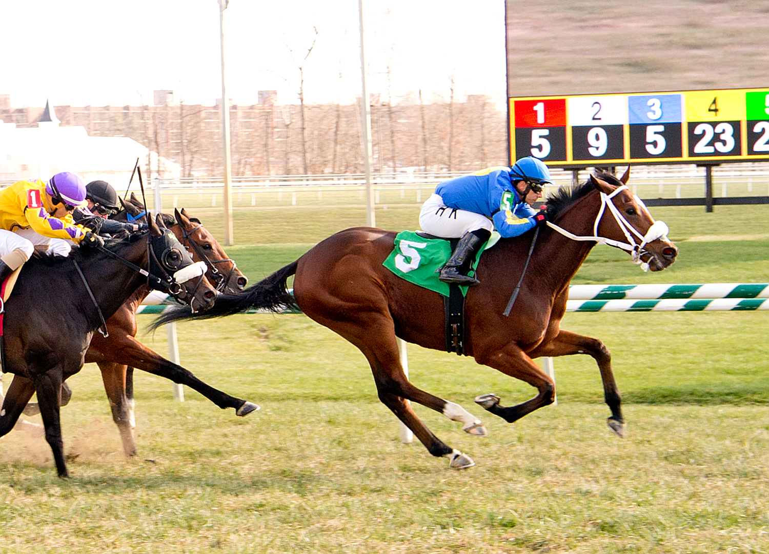 Fly E Dubai earned a win in his first lifetime start November 27th at Laurel. The upset winner paid $44.80 to win. photo by Jim McCue.