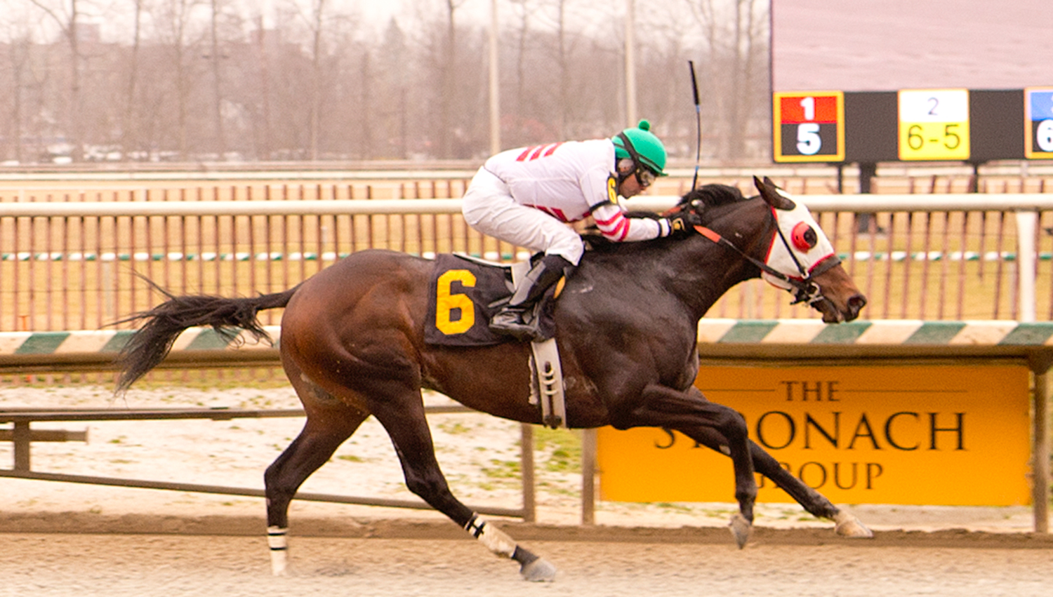 Jockey Gilberto Delgado guides Tiz Unbeatable to his second lifetime win January 20th at Laurel. Photo by Jim McCue.