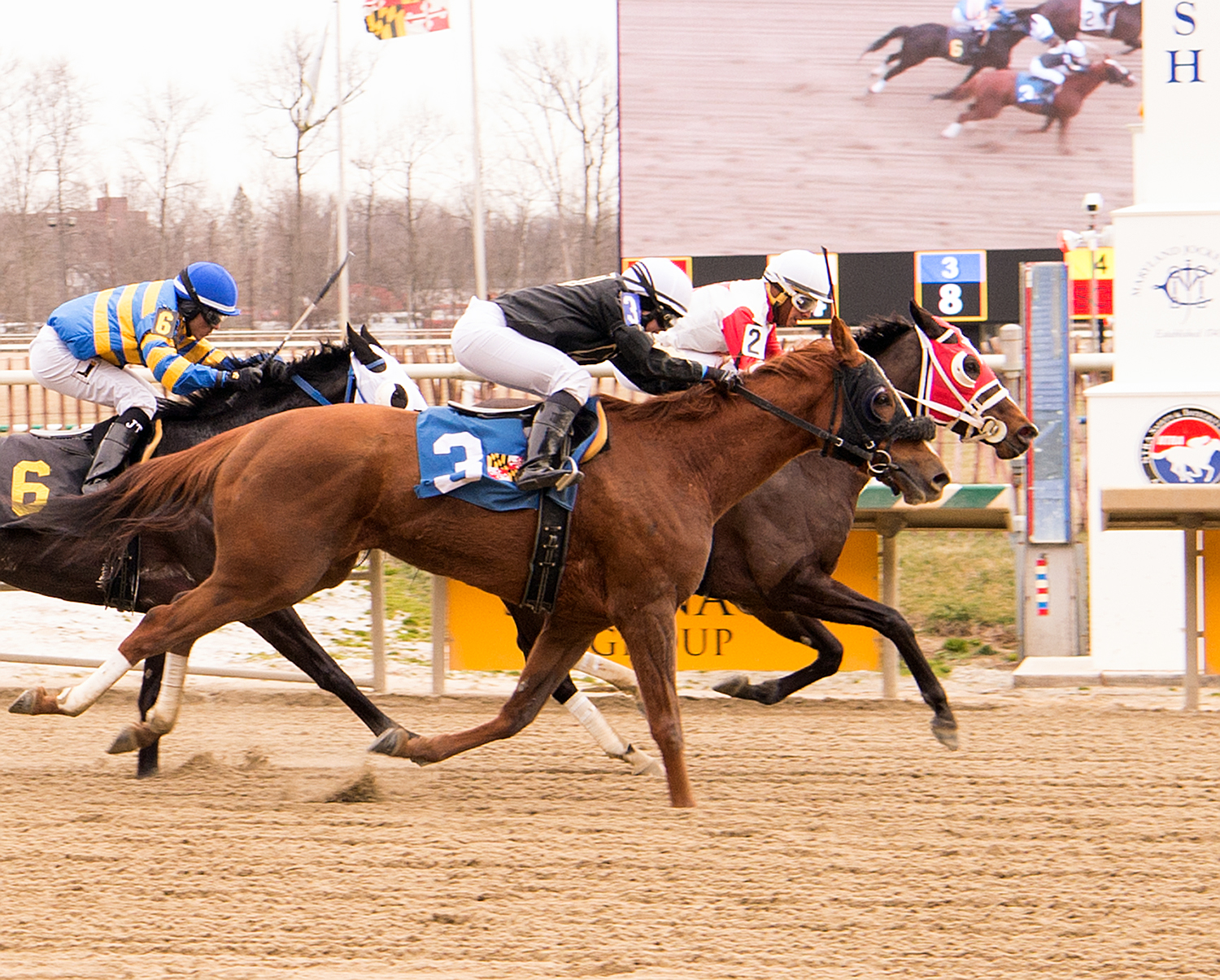 Pardontori'sfrench (outside) just missed on Super Bowl Sunday at Laurel. Photo by Jim McCue.