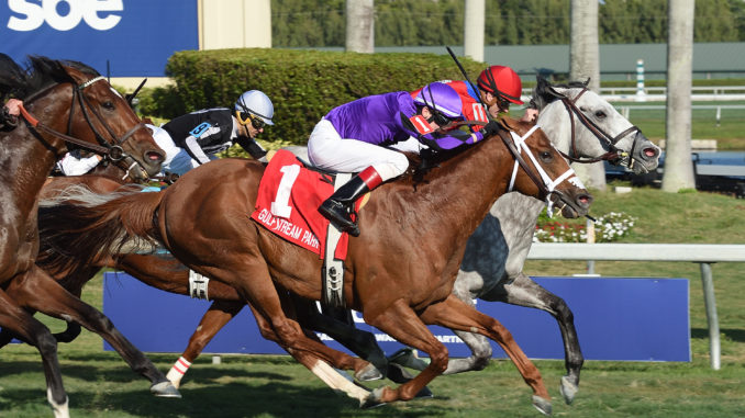 Long On Value took third last Saturday in the $125,000 Gulfstream Park Turf Sprint Stakes. Photo by Coglianese Photography.
